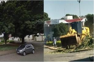 Flagrante de dano ambiental na cidade