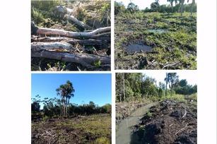 Área degradada tem 3 mil metros quadrados